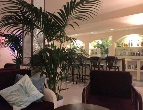 Neugestaltung einer Hotelbar auf Teneriffa